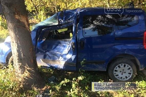 На Тернопільщині через ремонт дороги авто влетіло в дерево (фото), фото-2