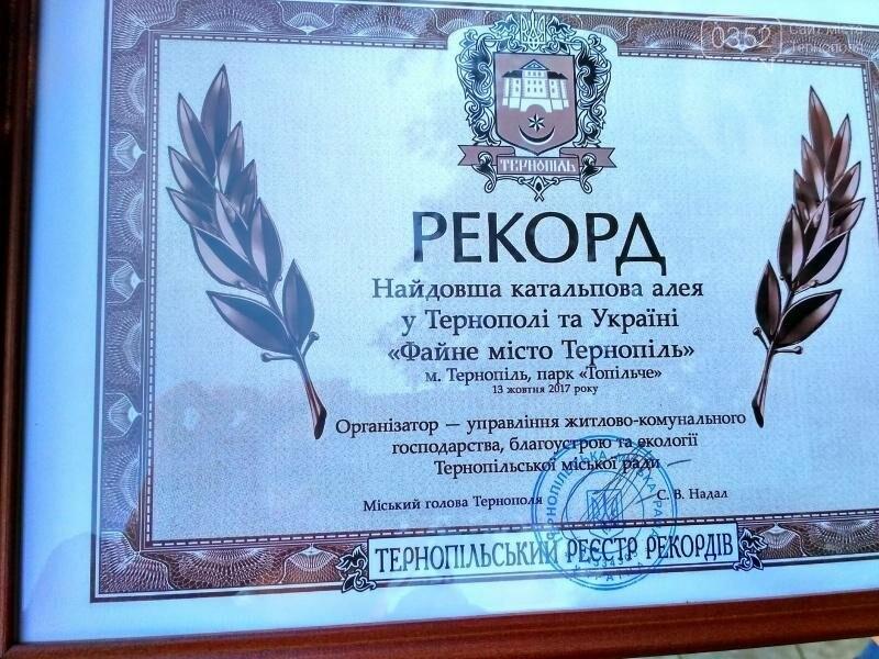 У Тернополі висадили найдовшу катальпову алею в Україні (фото), фото-6