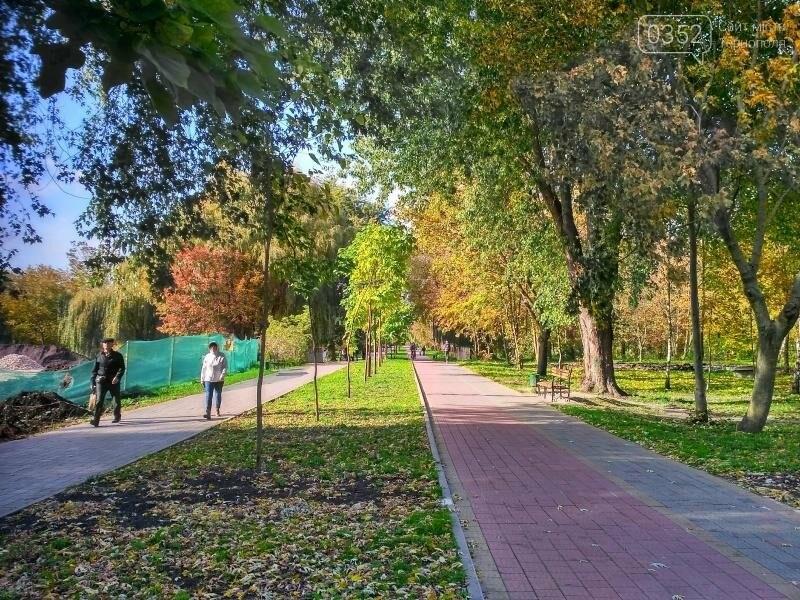 У Тернополі висадили найдовшу катальпову алею в Україні (фото), фото-5