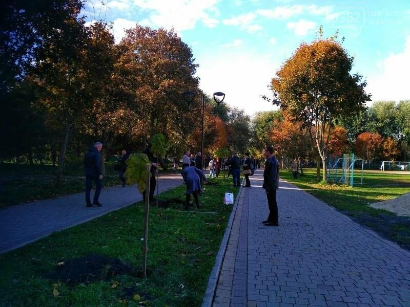 У Тернополі висадили найдовшу катальпову алею в Україні (фото), фото-2