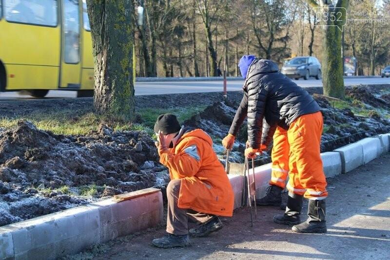Ремонт тротуарів на дамбі Тернопільського ставу планують закінчити цього року, фото-2