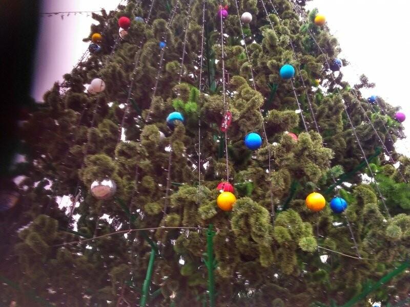 У Тернополі головну новорічну красуню міста прикрасили новими іграшками (фото), фото-4