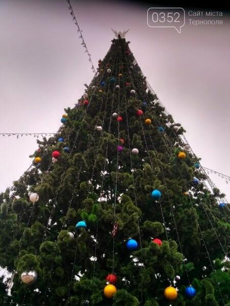 У Тернополі головну новорічну красуню міста прикрасили новими іграшками (фото), фото-1