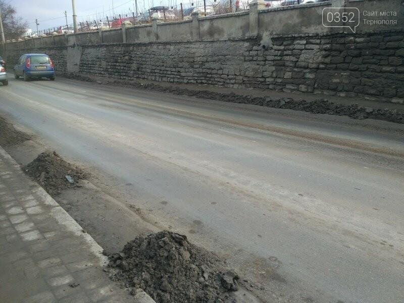 У Тернополі продовжують прибирати узбіччя доріг, фото-1
