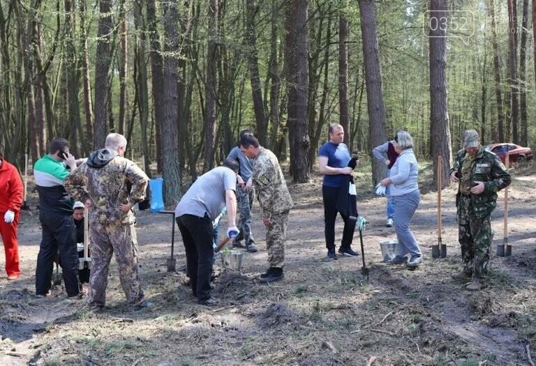 На Тернопільщині висадили близько 17 тисяч сосен (ФОТО), фото-2