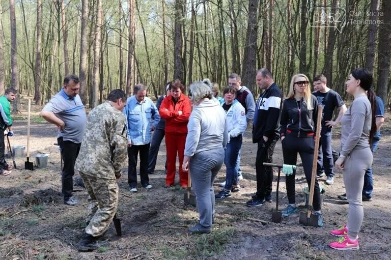 На Тернопільщині висадили близько 17 тисяч сосен (ФОТО), фото-3
