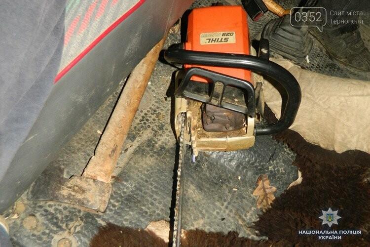 На Тернопільщині незаконно рубали деревину задля виготовлення музичних інструментів (ФОТО), фото-2