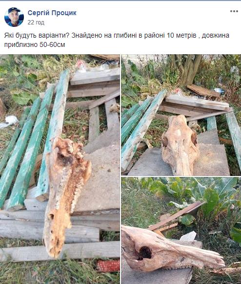 Мешканець Тернопільщини викопав череп невідомої істоти (ФОТО), фото-1