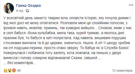На Тернопільщині пенсіонерка, повернувшись із церкви, зарубала кота, фото-1