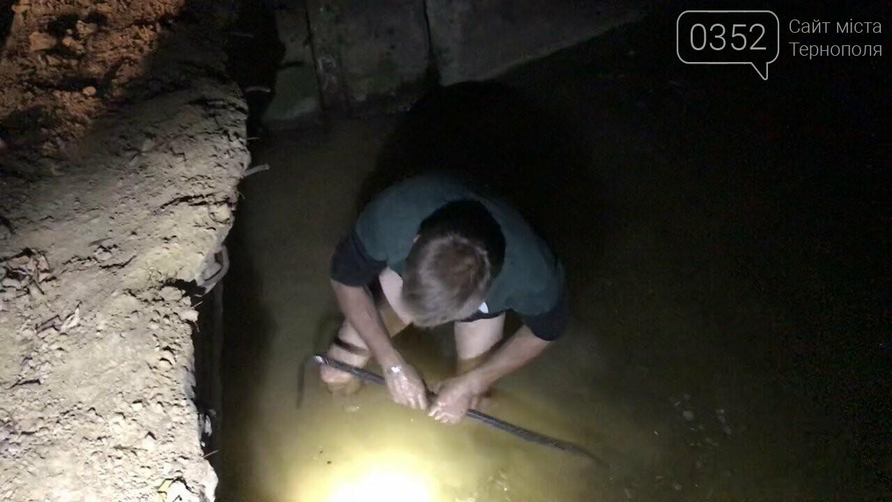 На Тернопільщині дії цукрового заводу можуть завадити нересту риби  у водоймах (ФОТО), фото-6