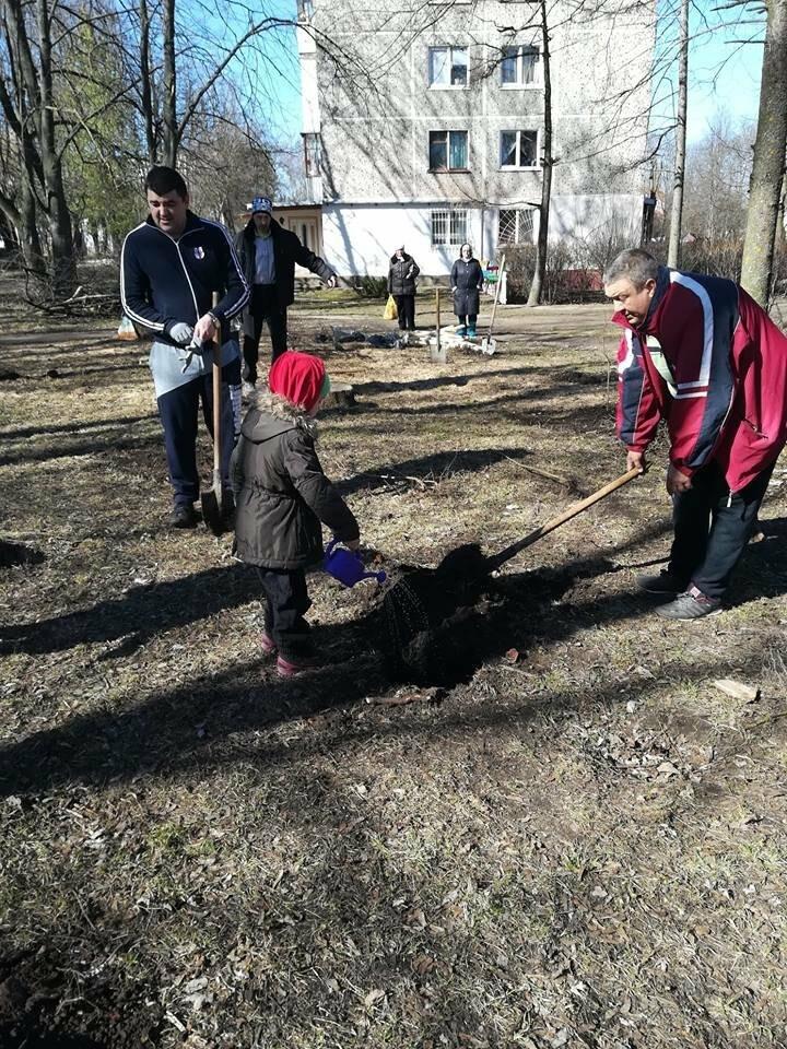 """У Тернополі місцеві мешканці разом з ГО """"Екоальянс"""" висадили більш як 100 молодих дерев (ФОТОФАКТ), фото-3"""