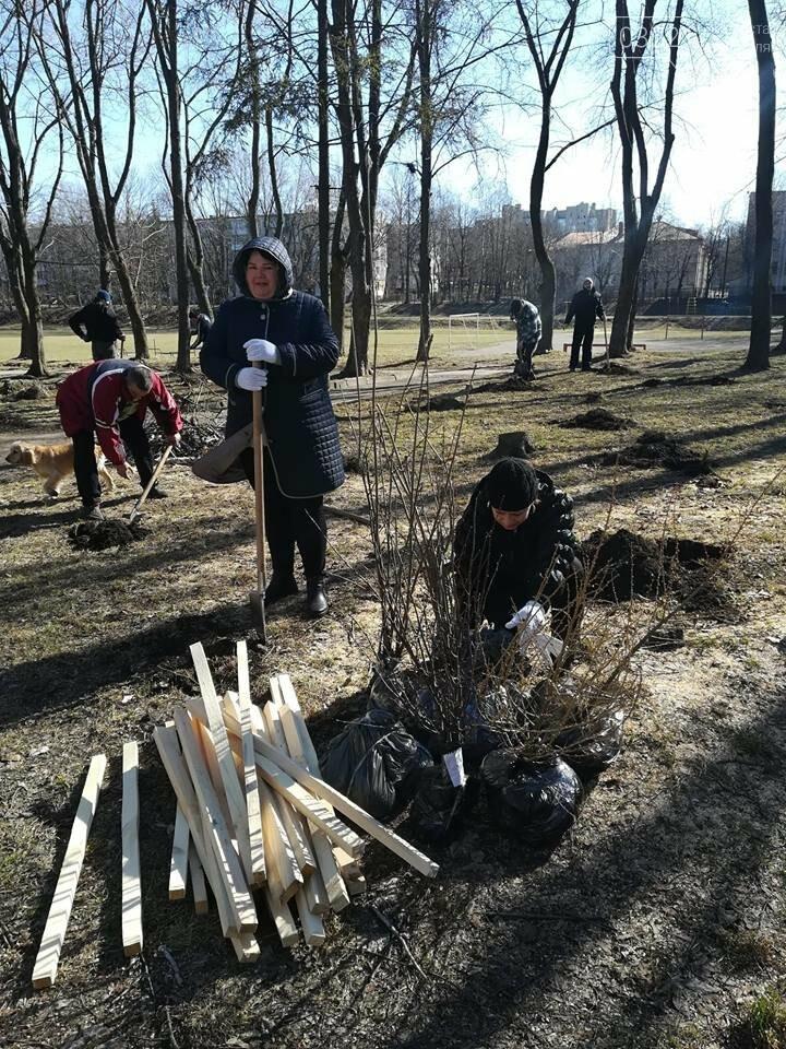 """У Тернополі місцеві мешканці разом з ГО """"Екоальянс"""" висадили більш як 100 молодих дерев (ФОТОФАКТ), фото-1"""