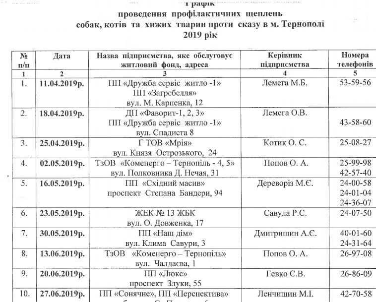 У Тернополі безкоштовно вакцинуватимуть проти сказу домашніх улюбленців (графік), фото-1