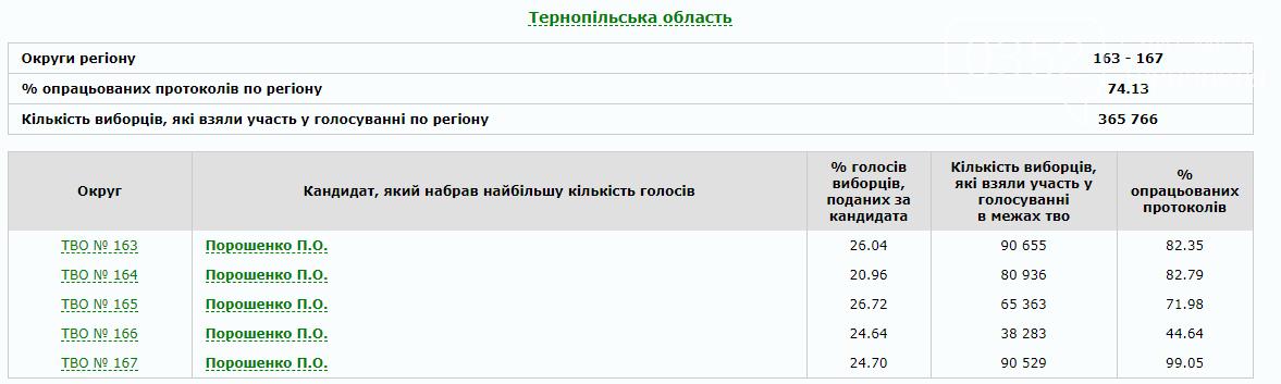 Кого обрали тернополяни  та хто у лідерах по Україні: результати (ФОТО), фото-1
