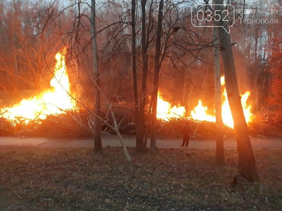 Що горить в тернопільському парку Національного Відродження? (фото), фото-1
