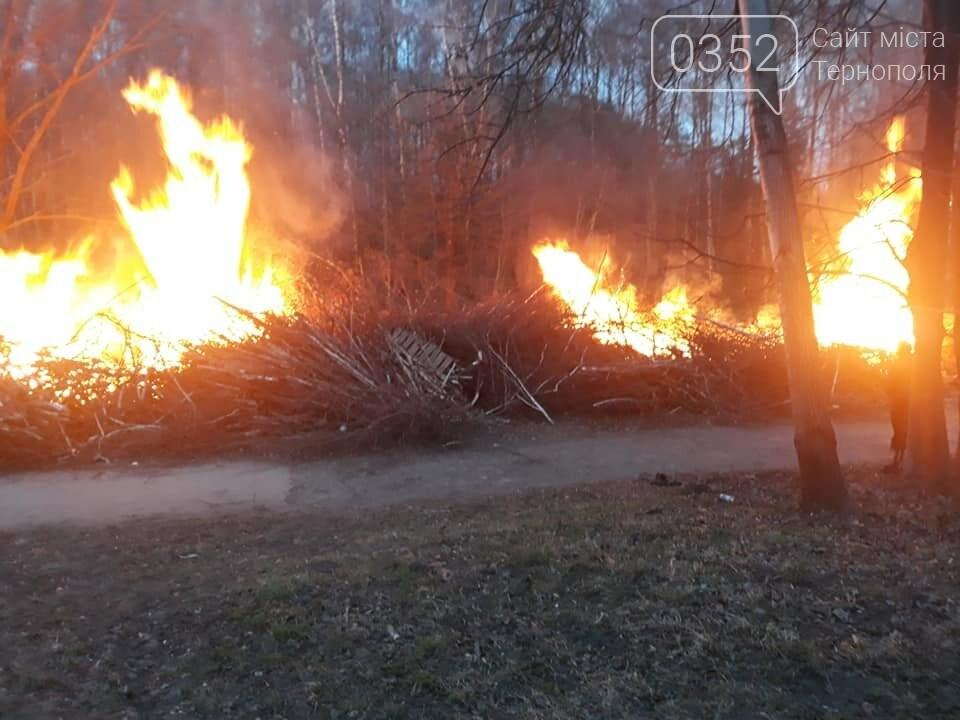 Що горить в тернопільському парку Національного Відродження? (фото), фото-2
