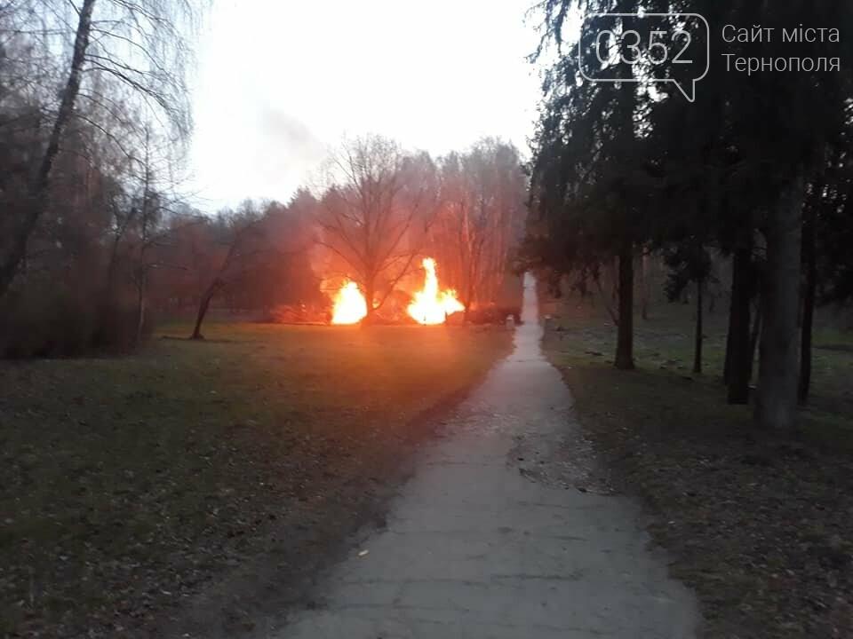 Що горить в тернопільському парку Національного Відродження? (фото), фото-3