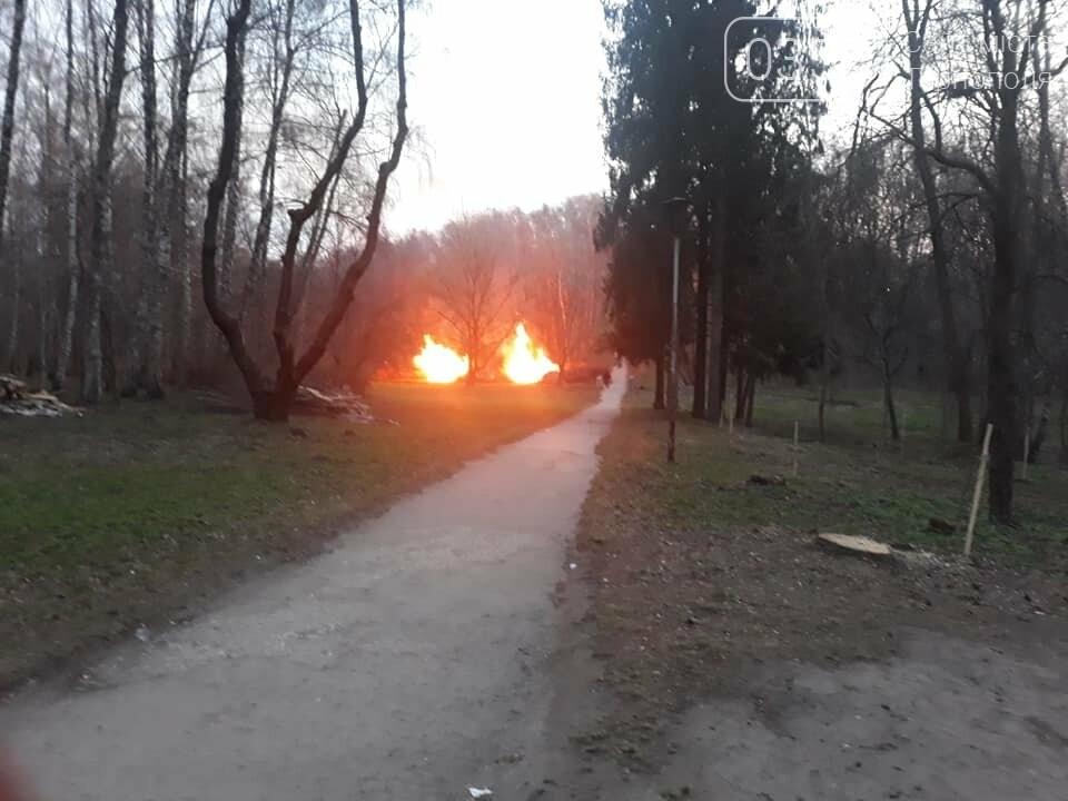 Що горить в тернопільському парку Національного Відродження? (фото), фото-4