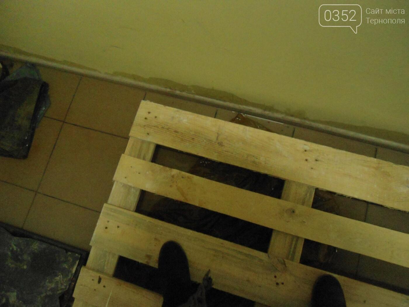 У Тернополі у багатоквартирному будинку постійно прориває каналізацію, затоплюючи підвальні приміщення благодійних організацій (ФОТО, ВІДЕО), фото-9