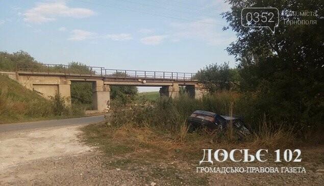 На Тернопільщині п'яний водій не впорався з керуванням і опинився в кюветі (фото), фото-3