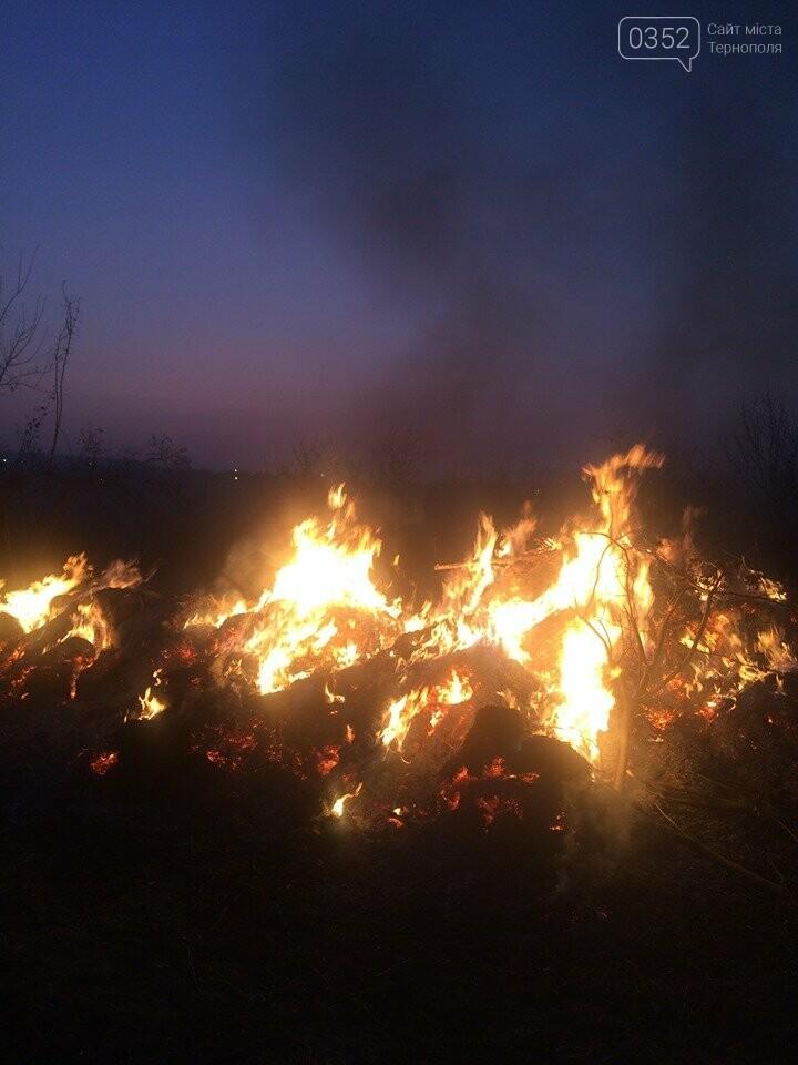 На Тернопільщині через паліїв сухої трави загорілося кладовище (ФОТОФАКТ), фото-3