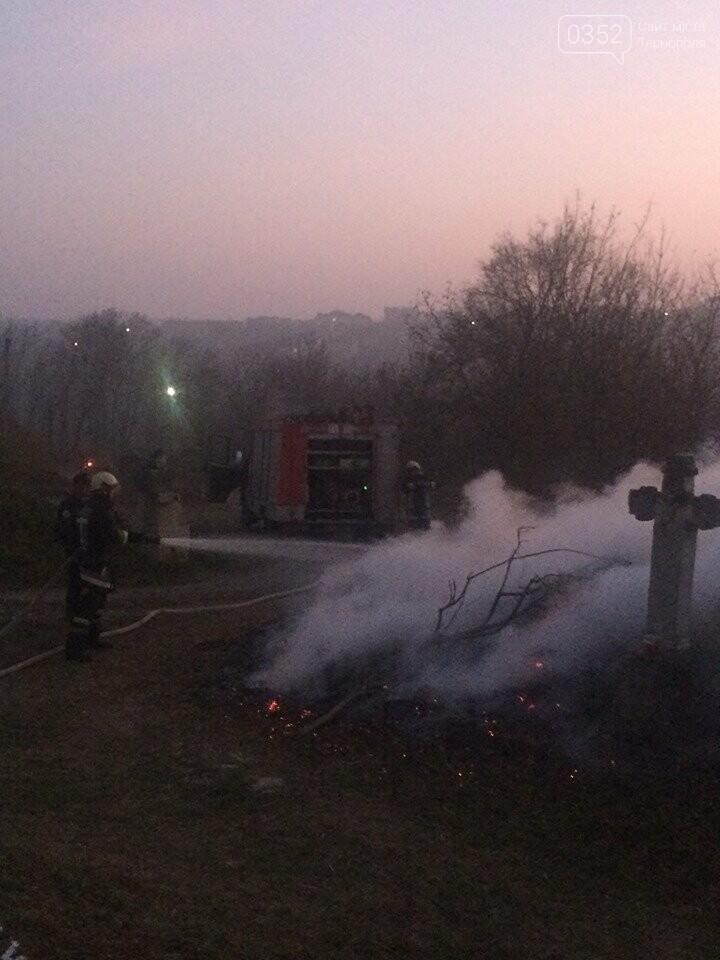На Тернопільщині через паліїв сухої трави загорілося кладовище (ФОТОФАКТ), фото-5