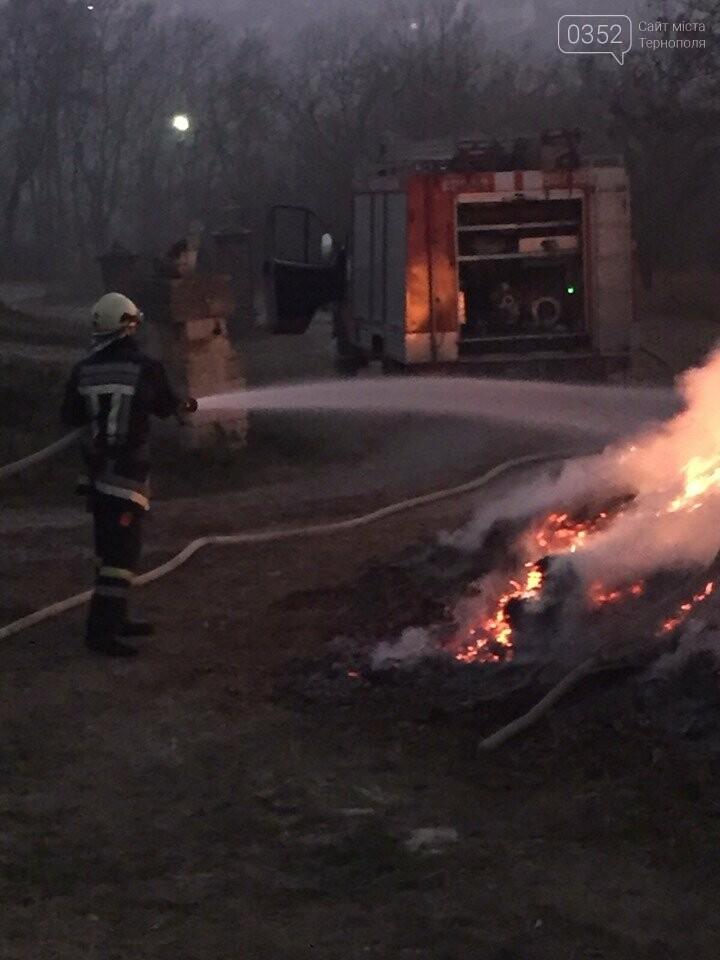 На Тернопільщині через паліїв сухої трави загорілося кладовище (ФОТОФАКТ), фото-4