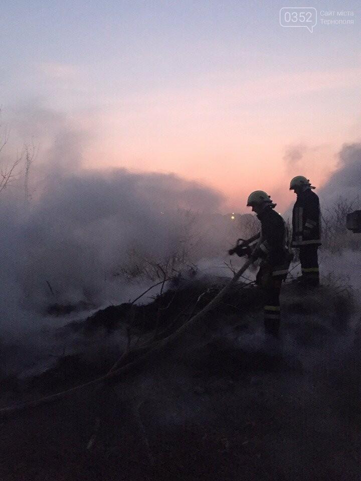 На Тернопільщині через паліїв сухої трави загорілося кладовище (ФОТОФАКТ), фото-6