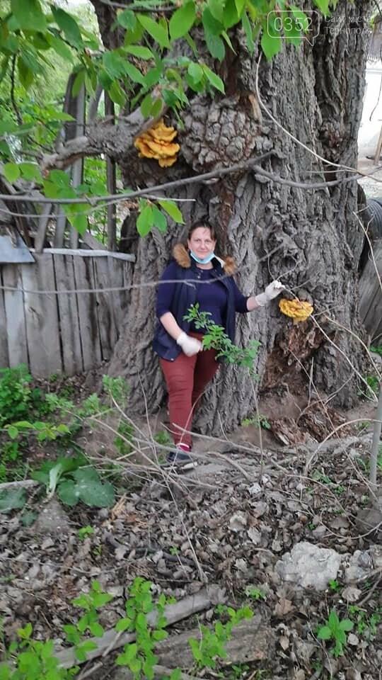 """""""Емоції зашкалюють"""": біля Тернополя жінка знайшла гриби-рекордсмени, вагою понад 4 кг (ФОТО), фото-1"""