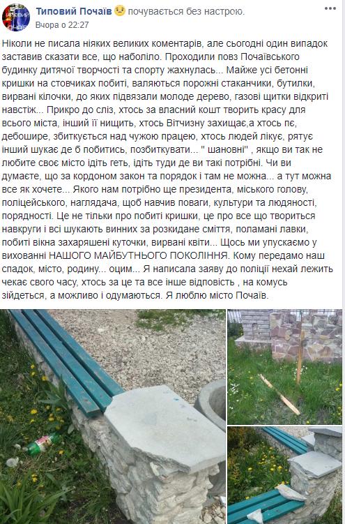 Вандали спочатку насмітили, а потім розгромили територію будинку дитячої творчості на Тернопільщині, фото-1