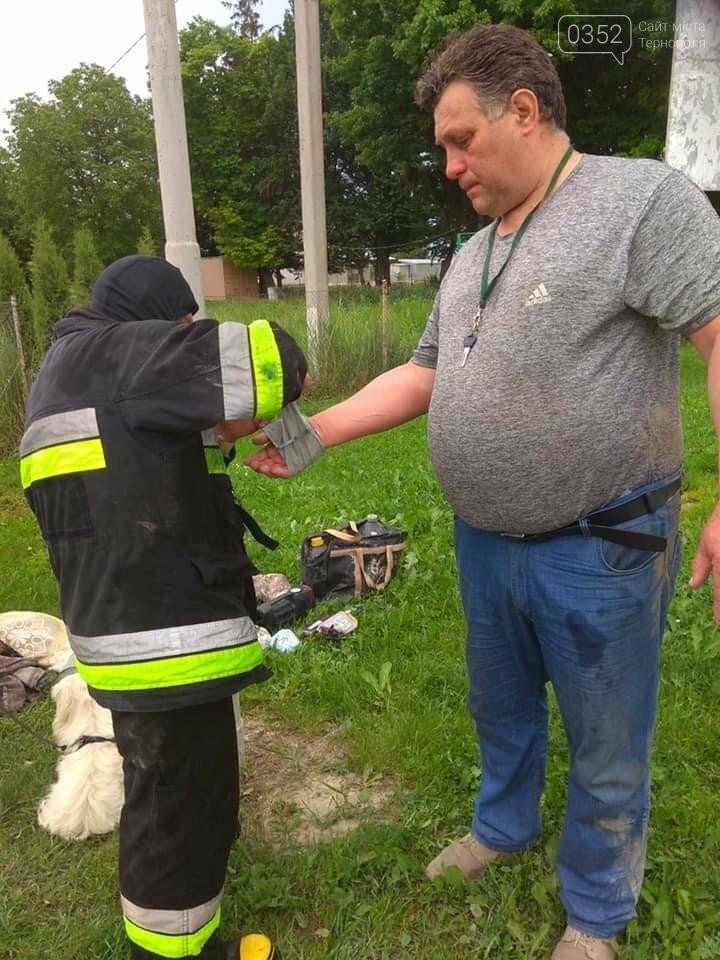 На Тернопіллі поблизу АЗС загорілась машина (ФОТО), фото-3