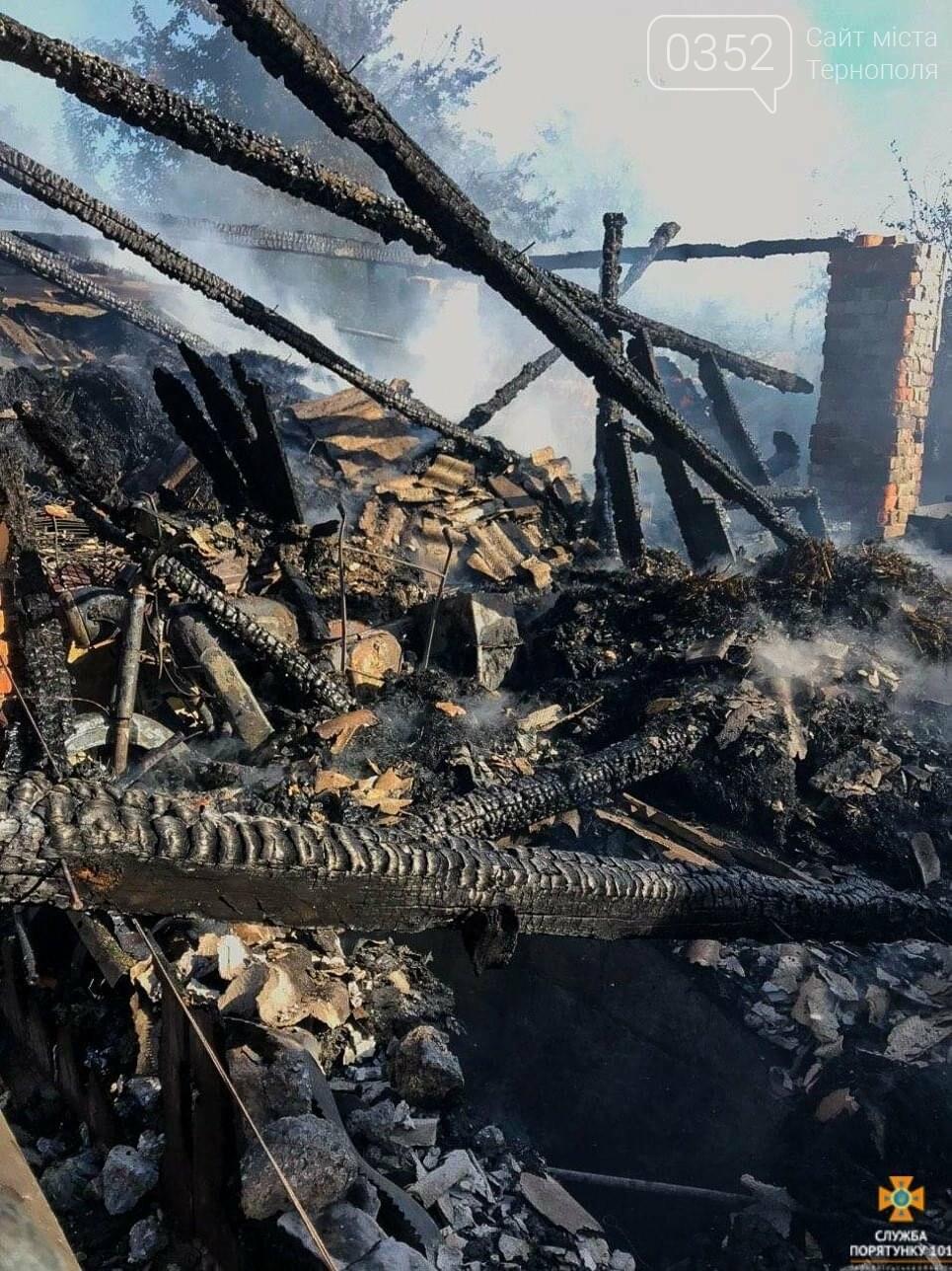 Через пожежу на Тернопільщині згоріла господарська будівля та тони пшениці і ячменю (ФОТО), фото-3