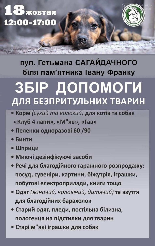 У Тернополі відбудеться благодійний збір допомоги для безпритульних тварин, фото-1