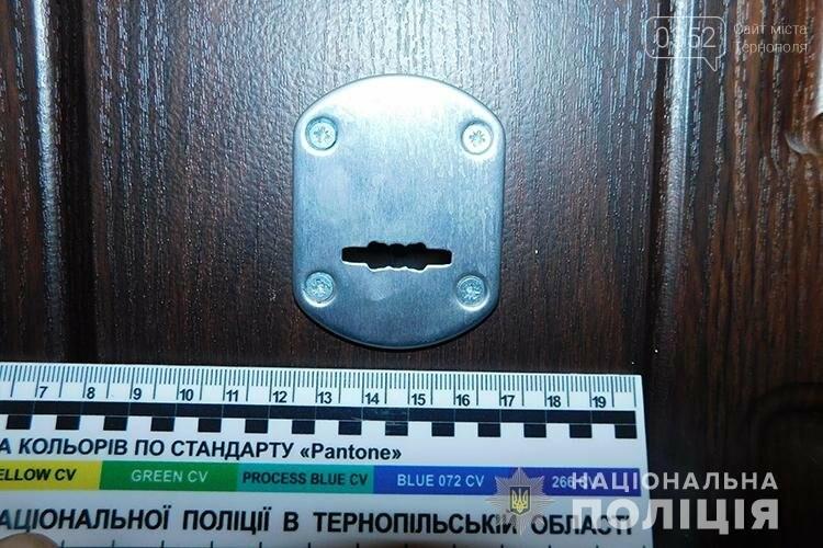 Злодіїв-гастролерів, що обкрадали квартири на Тернопільщині, затримали оперативники (ФОТО, ВІДЕО), фото-7