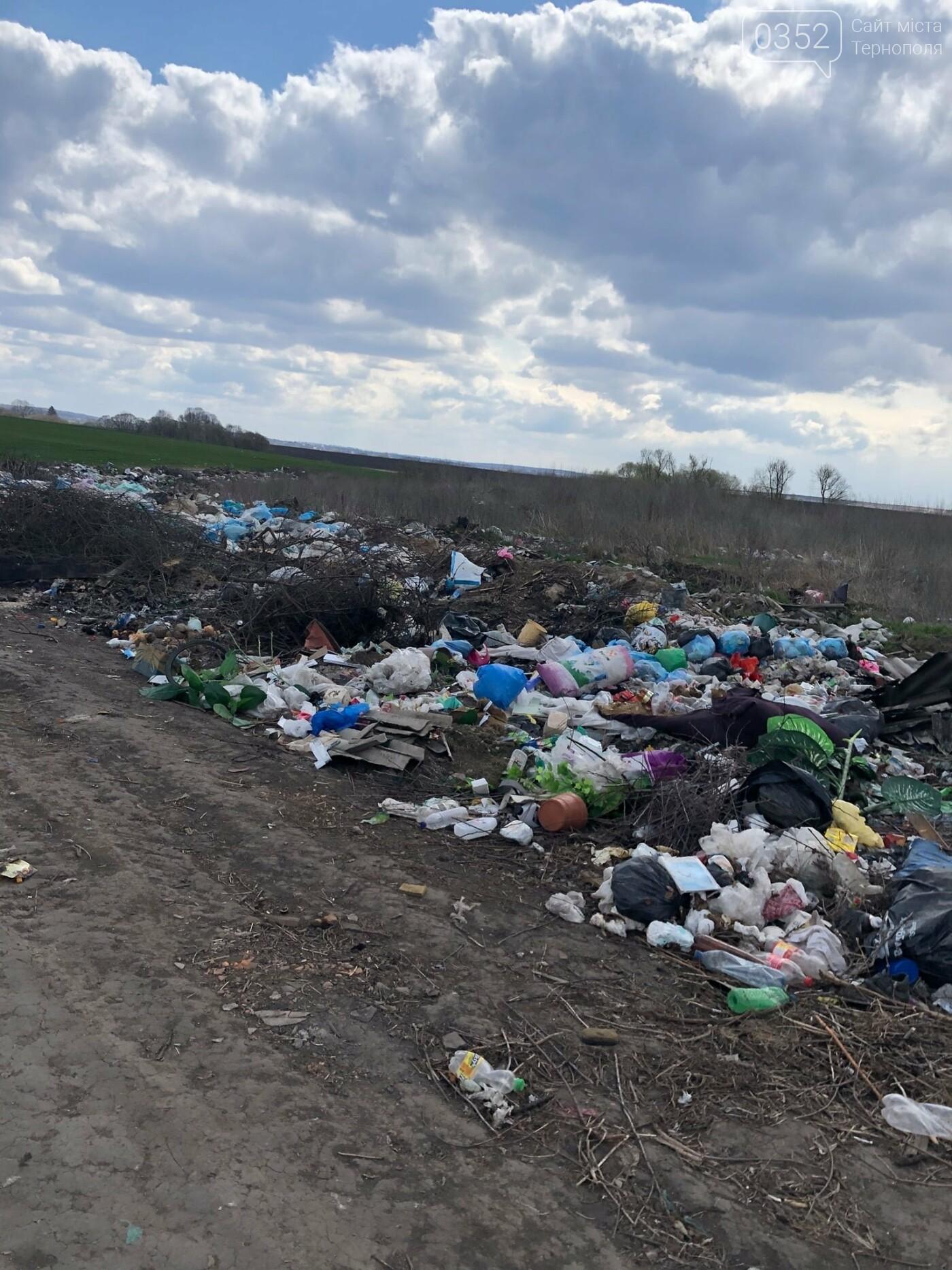 Біля Озерної впорядкували величезне стихійне сміттєзвалище, фото-2