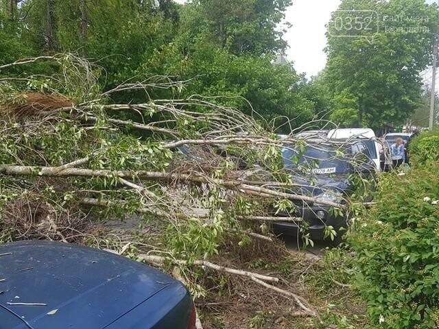 Вітер наробив лиха: на автомобілі, припарковані поблизу лікарні, впало дерево  (ФОТО), фото-4