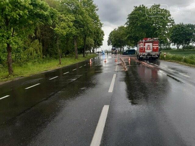 Мікроавтобус з українцями потрапив в смертельну ДТП в Польщі (ФОТО), фото-2