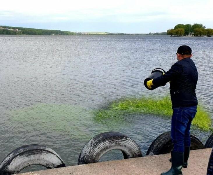 Надсучасним методом у Тернополі очищують став (ФОТО), фото-1