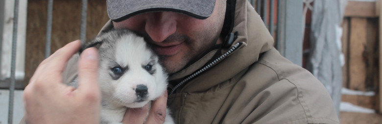 Тернополян запрошують до обговорення правил утримання домашніх та безпритульних тварин
