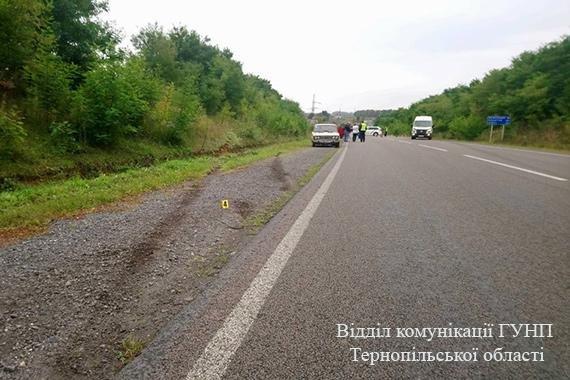 Неподалік Козови перекинувся бус, водій загинув на місці (фото), фото-1