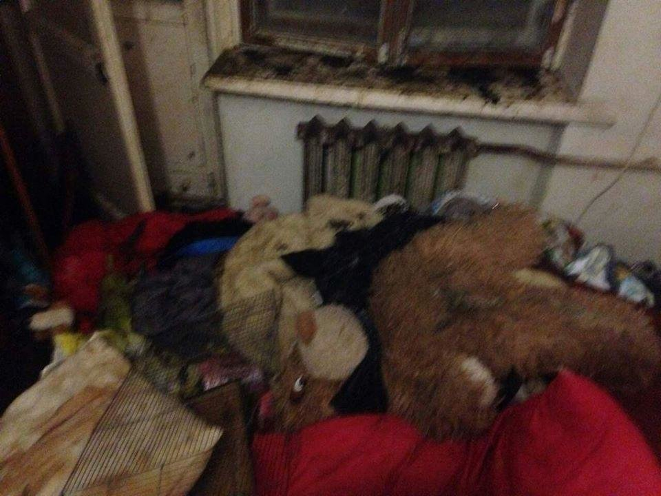 Шоковані навіть зоозахисники: тернополянка тримала в захаращеній квартирі десятки тварин (фото), фото-3