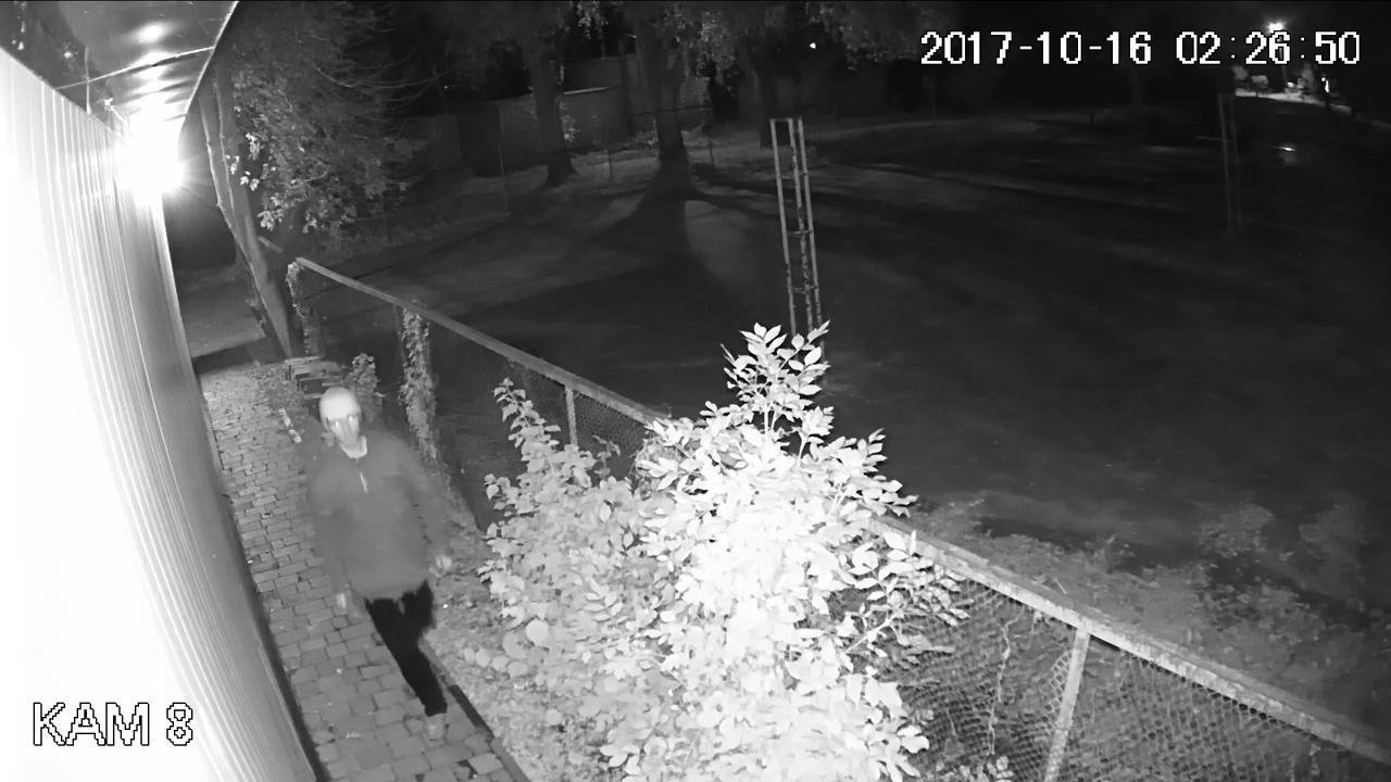 Правохоронці просять опізнати зловмисників, які пограбували банкомат в Тернополі (фото, відео), фото-4