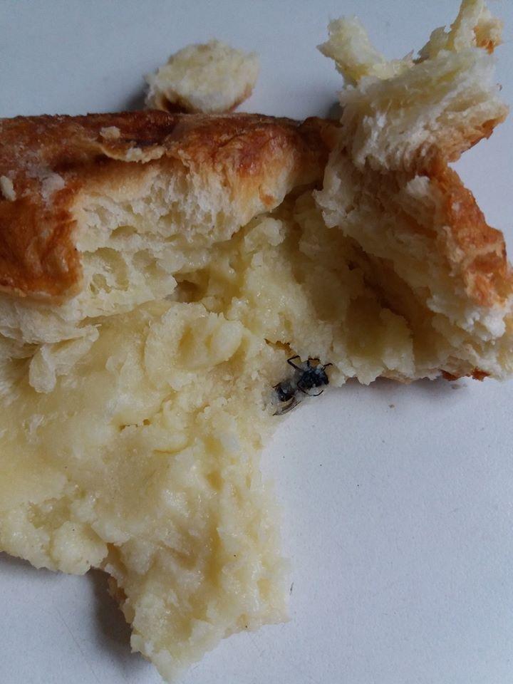 У Тернополі булочки начиняють мертвими комахами (фото), фото-1