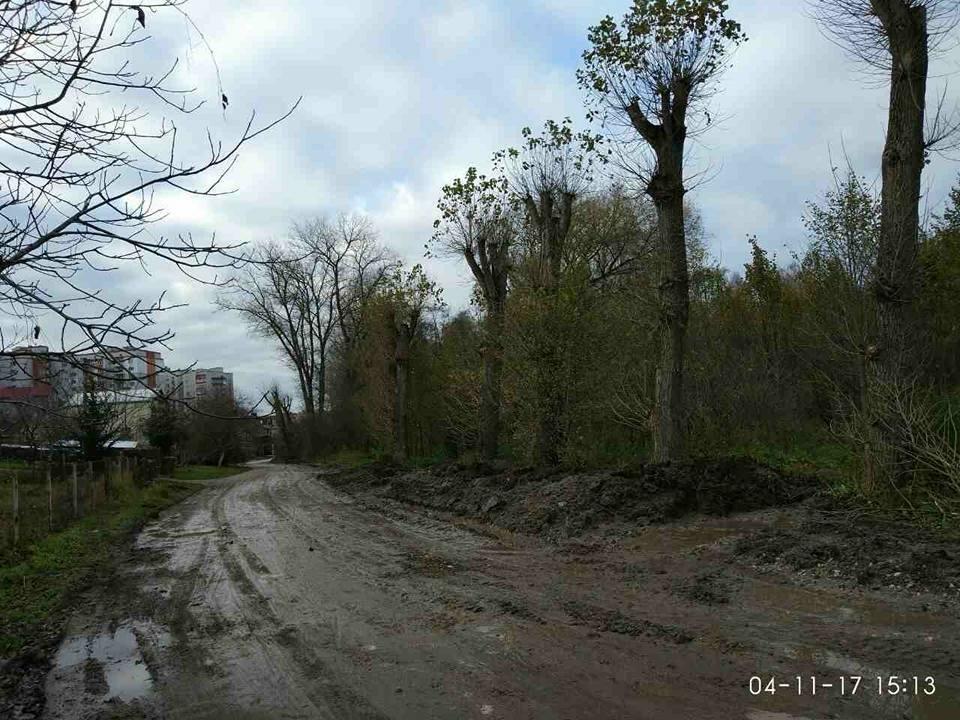 """""""Щодня у болоті"""": тернополяни нарікають, що через будови в припарковій зоні їхня вулиця перетворилася на місиво бруду (Фото, відео), фото-7"""