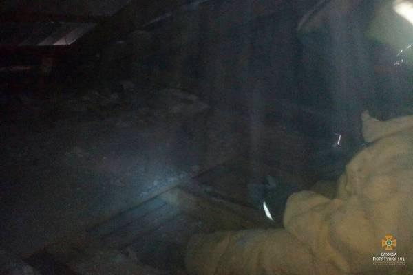 Дитячий санаторій на Тернопільщині рятували від нашестя шершнів (ФОТО), фото-2