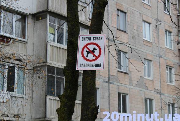 """На """"Сонячному"""" мешканці одного із будинків вигадали, як боротися із собачими """"бомбами"""" (фото), фото-2"""