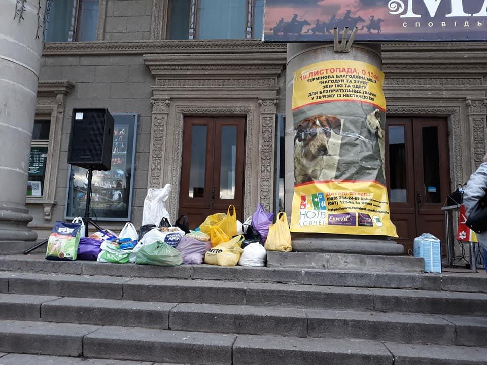 Волонтери у Тернополі провели акцію «Нагодуй та зігрій» (фото), фото-1