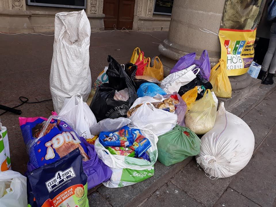 Волонтери у Тернополі провели акцію «Нагодуй та зігрій» (фото), фото-2
