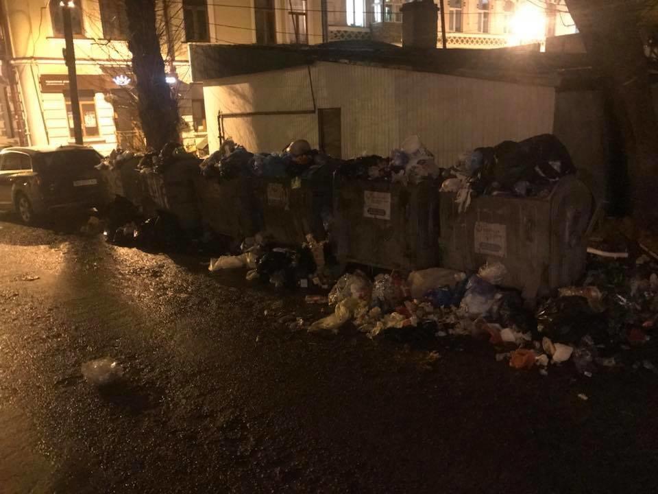 Тернополяни обурені: у центрі міста смердить сміття, яке випадає з контейнерів (ФОТО+ВІДЕО), фото-1