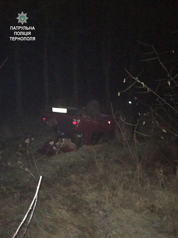 Тернопільські патрульні склали 2 протоколи на водія, який скоїв ДТП і перекинув авто (ФОТО), фото-1